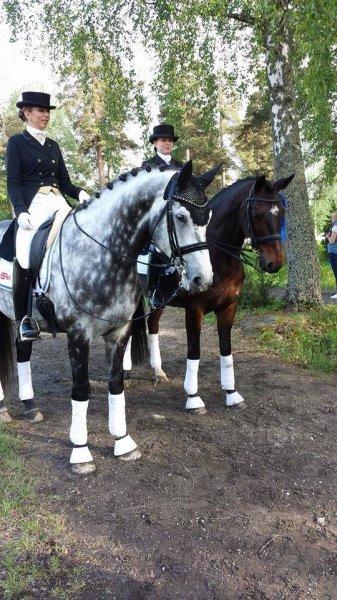 Eesti koolisõitjad tõid Ypäjält mitmeid auhinnalisi tulemusi