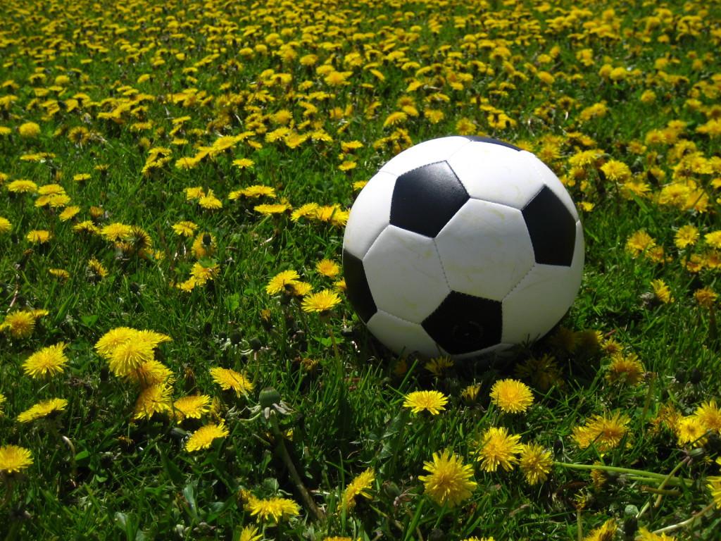 100 SPORTLASE AVALDUS Linn on spordi heaks palju teinud