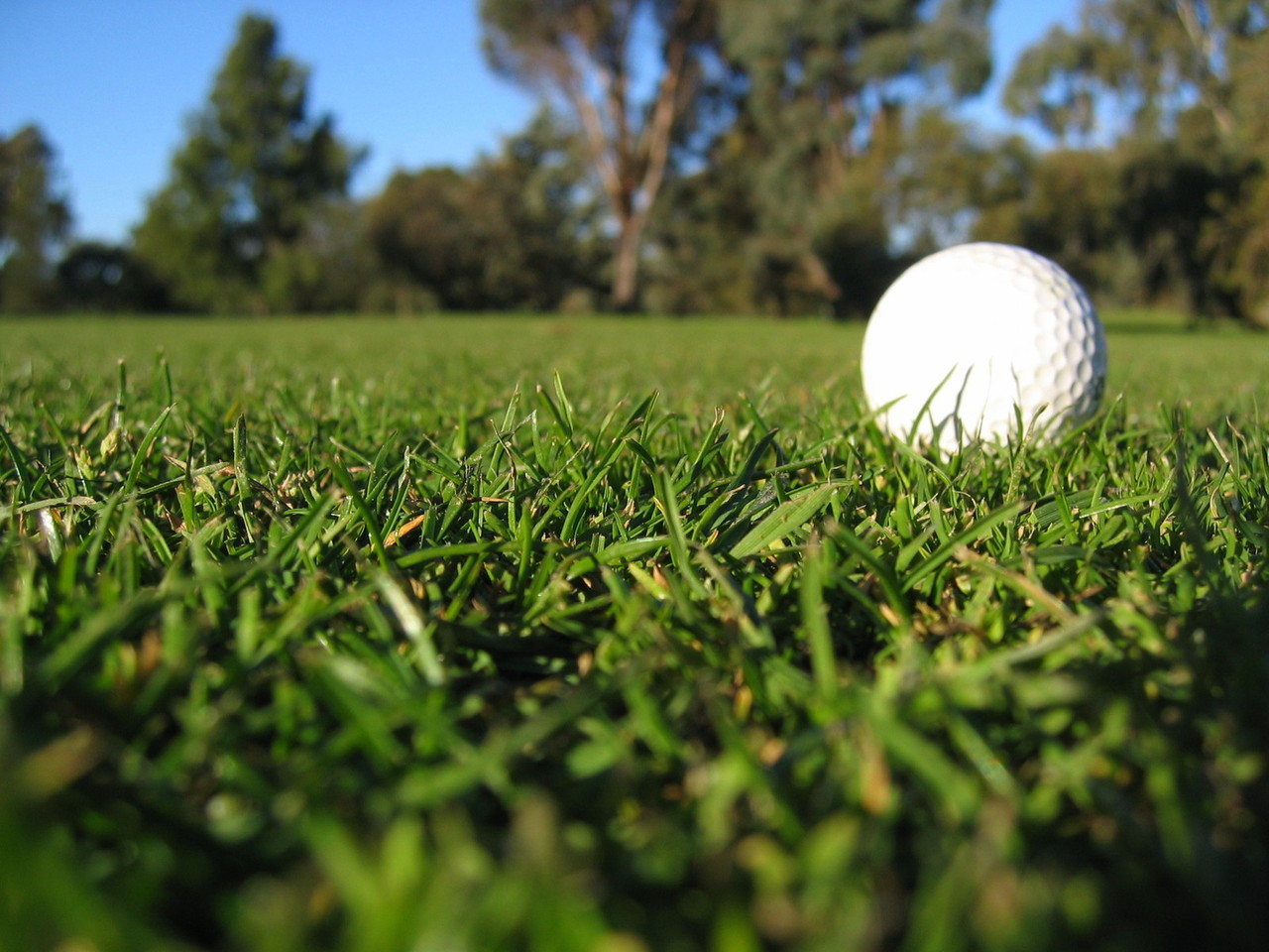 AJAKIRI GOLF! TEADMISEKS GOLFITREENERITELE! Eesti Golfi Liit otsib asjalikku peatreenerit