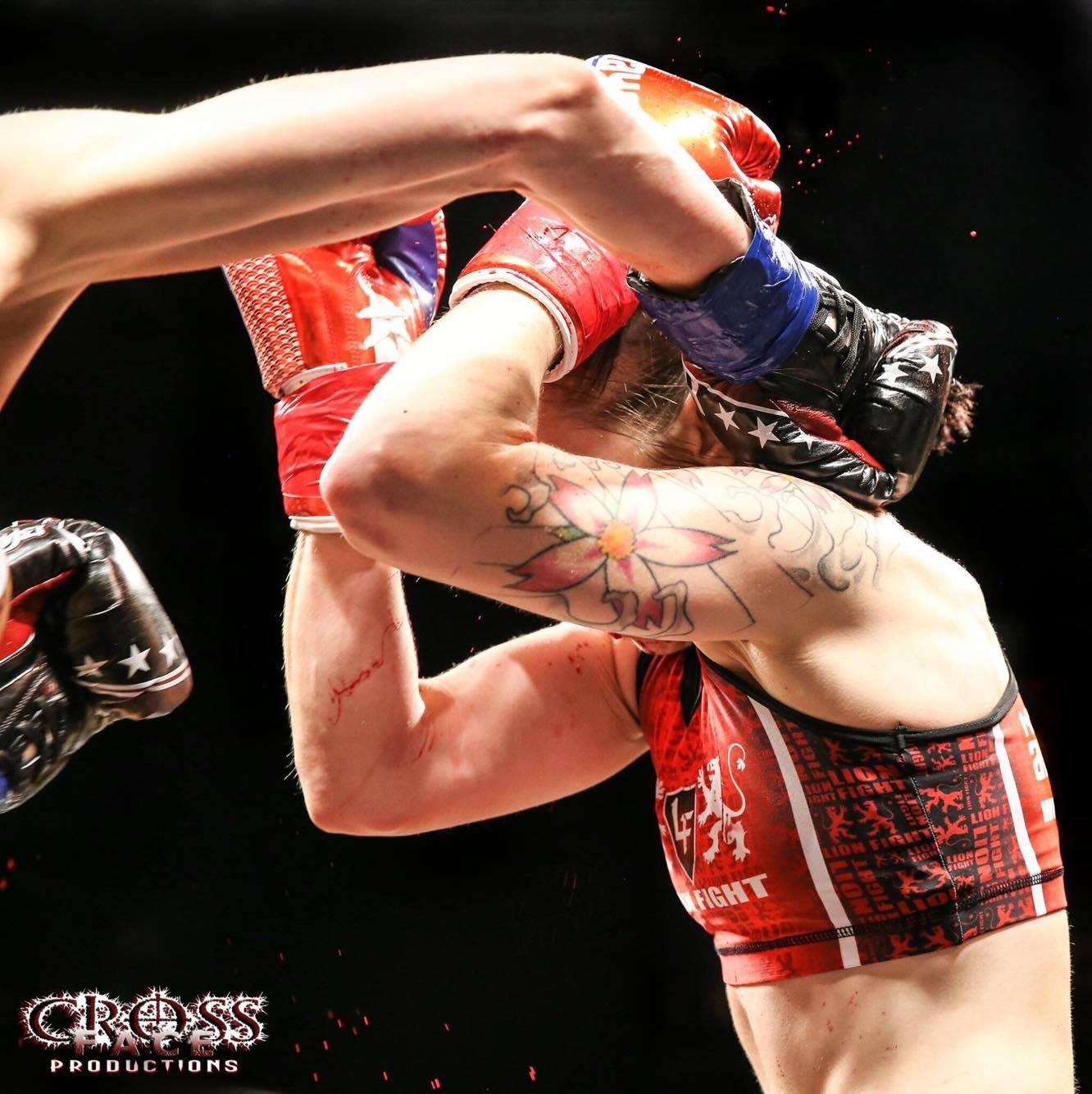 Lion Fight_04